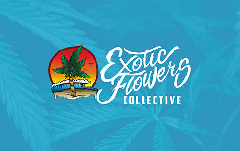 exotic-flowers-collective